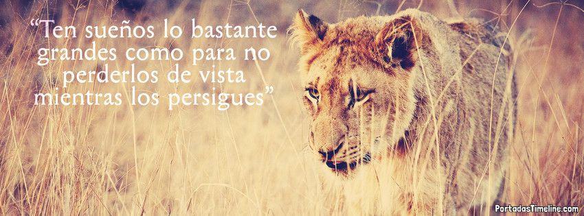 leona reina