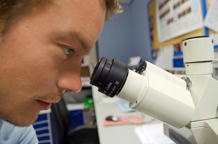 Curso gratis de cultivos celulares