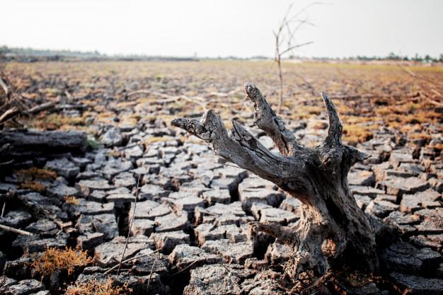 Curso gratuito sobre el calentamiento global